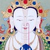 The Tibetan Practice of Phowa II